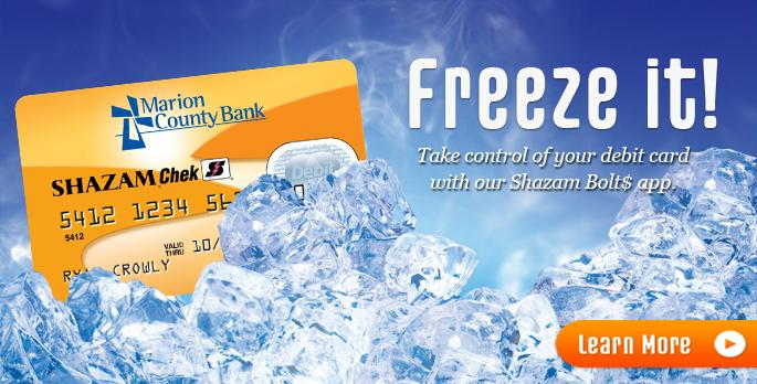 Freeze your Debit Card website banner